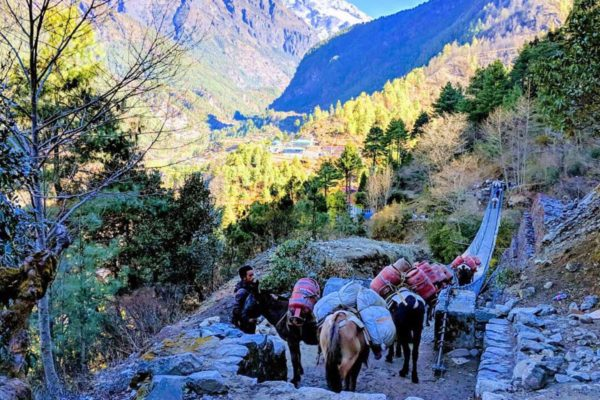 Ghorepani Pool Hill Trek 7